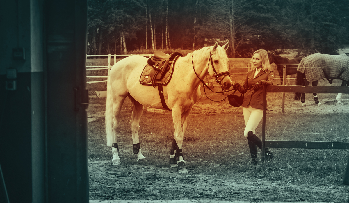 2019 Adoption Innovation Grant - The Right Horse