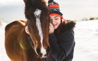 Global Federation of Animal Sanctuaries Receives The Right Horse Initiative Grant for Equine Rescue and Sanctuary Accreditation Program