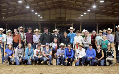 21 Horses Adopted at the Third Annual Appalachian Trainer Face Off