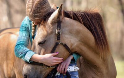 Texas 4-H Youth on a Mission to Help Horses in Transition